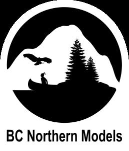 BCNModels4